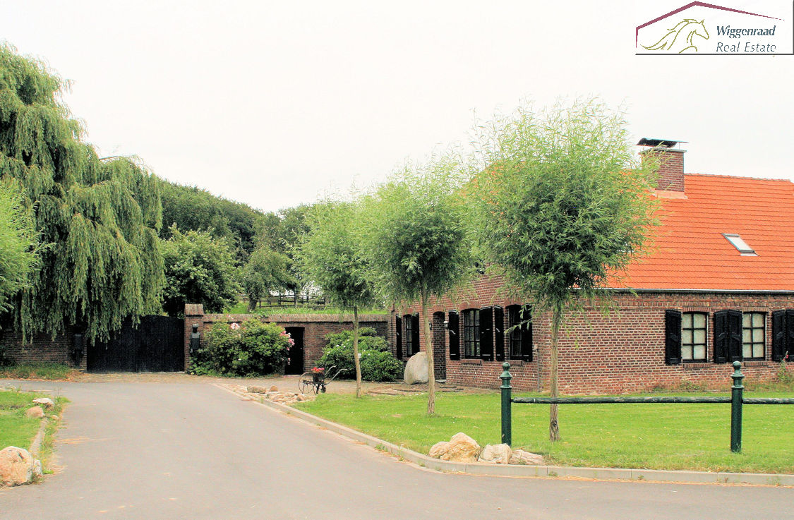 For Sale World Class Horse Farm With Training And Breeding Facilities At Border Germany Netherlands